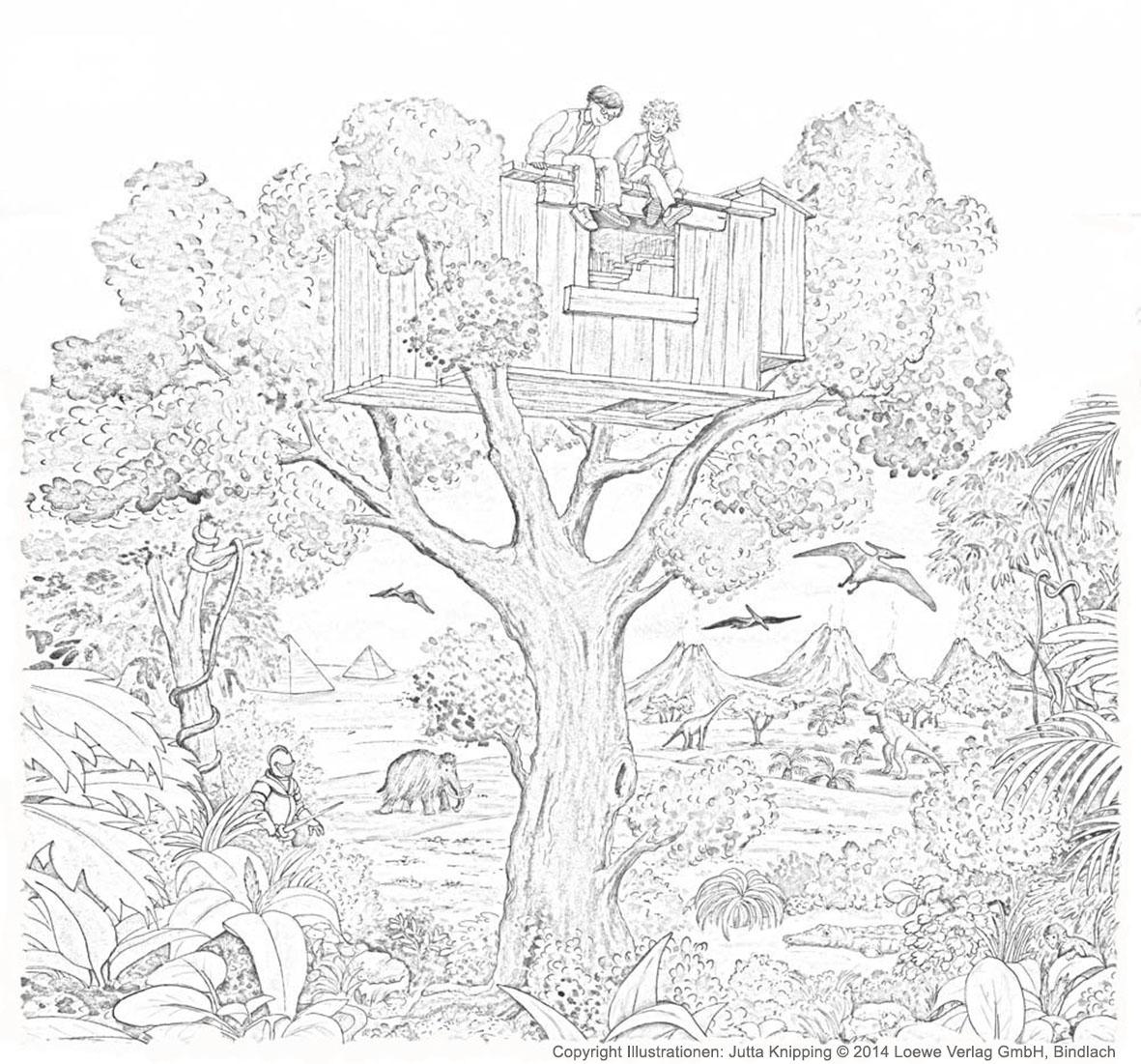 ausmalbild  das magische baumhaus  loewe verlag